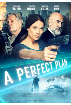 A Perfect Plan (2020) Torrent WEBRip 1080p Dublado Legendado Baixar Download